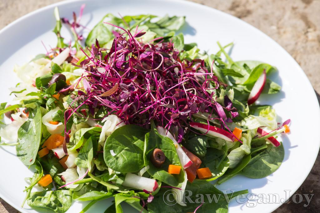 Salata cu vlastari de amaranth