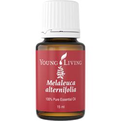 Melaleuca (Alternifolia)